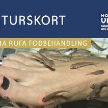 5-turskort til fodbehandling med Garra Rufa fisk på Hotel Viking i sæby (1.250,00) Du kan prøve dem i Lyngby storcenter for en hund.
