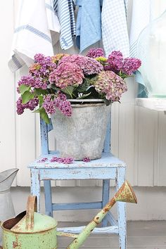 VIBEKE DESIGN: In an old bucket!