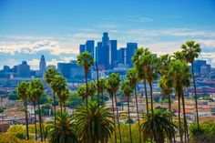 Contemplating a move? Don't ditch urban living for the country just yet--you might just be living in the wrong city. Take our quiz and find out your U. Buzzfeed Test, Palm Tree Pictures, Los Angeles Skyline, Travel Europe Cheap, Under Stairs Cupboard, Yoga Journal, Art Prints Quotes, Wellness Programs, Healthy Recipes For Weight Loss