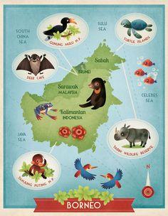 Gaia Bordicchia Illustrations: Illustrated Maps