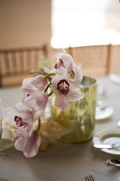 Centerpieces.  Mmm I know an orchid grower!