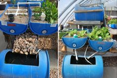 10 Aquaponic Systems for Unlimited Food