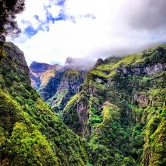In love with Madeira . .. #madeira #portugal