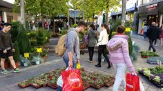 Dutch Flowers on Tour Wednesday 24th - Sunday 28th September 2014 MPE returns to Glasgow for a 5 day continental market before returning for the much anticipated Christmas Market!