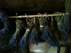 Lavender from French General blog