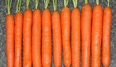 Myslíme si, že by sa vám mohli páčiť tieto piny - sbel Hydroponics, Gardening Tips, Carrots, Flora, Food And Drink, Home And Garden, Vegetables, Green, Plants