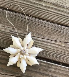 Items similar to Seashell Ornament Beach Snowflake Twine & Natural White Conch Shell Christmas Holiday Decoration Decor Mermaid Flower - TheSandbar on Etsy Seashell Christmas Ornaments, Nautical Christmas, Christmas Holiday, Sea Glass Crafts, Sea Crafts, Seashell Art, Seashell Crafts, Seashell Wreath, Seashell Projects