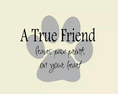 Yes They Do!! Can't Imagine My Life Without My Fur-Babies!! ♥