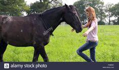 Die 62 Besten Bilder Von Ostwind Horses Horseback Riding Und