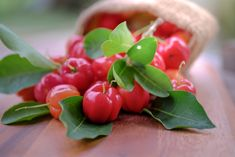 6 Health benefits of Acerola ( Barbados Cherry ) & Nutrition Data - LOYFLY Best Fish Oil, Vitamin C Supplement, Acerola, Nutrition Data, Fatty Fish, Anti Aging Tips, Skin Care Treatments, Barbados, Fruits And Vegetables