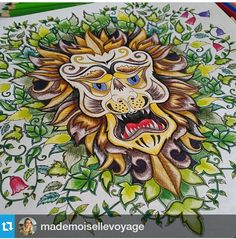 Lion Johanna Basford Coloring BookColoring BooksAdult Book PagesEnchanted Forest