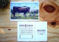 longhorn vintage postcard rsvp