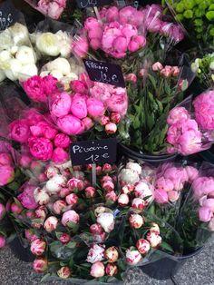 Pink Peonies in Paris. (Habitually Chic®)