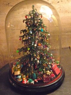 Christmas tree under a cloche! Liu Mussell heinrich-spindler Marinella I have the start kit,. comes with the tree, the base and some beads I believe you make into ornaments. That part looks complicated and timely but I do think the tree is very cool! Miniature Christmas, Noel Christmas, All Things Christmas, Winter Christmas, Christmas Ornaments, Victorian Christmas, Christmas Photos, Cloche Decor, The Bell Jar