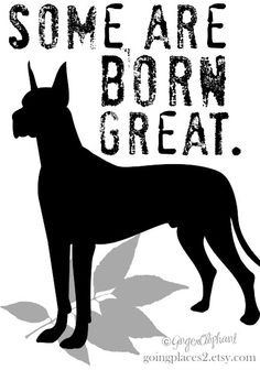 #Great #Dane #Dog #Art Print Some Are Born Great