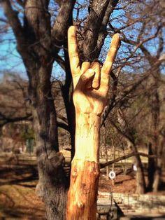 Hook 'Em tree carved in Wimberley, TX! Tree Sculpture, Sculptures, Wimberley Texas, Hook Em Horns, Morning Wood, Tree Carving, Tree Trunks, Texas Longhorns, Wood Carvings