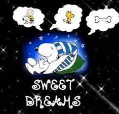 Good Night Sleep Well, Good Night Gif, Good Night Greetings, Night Wishes, Goodnight Snoopy, Snoopy Videos, Funny Good Night Quotes, Good Morning Snoopy, Happy Birthday Wishes Photos