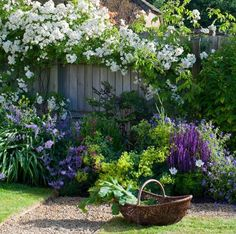 cottage garden love - with favorite colors - white, purples. LOVE!