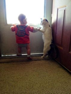 The 50 Cutest Things That EverHappened