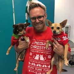 Our friends at Found Animals and Adopt & Shop invited us to their cute AF event and introduced us to some adoptable animals in their best holiday get-ups. | A Shelter Held An Ugly Sweater Party For Animals And It'll Warm Your Cold Heart