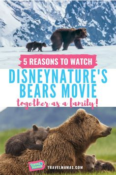 Not only will kids will love watching Disneynature's Bears movie, but also, they'll learn important lessons about life and nature. Available to watch via Amazon, this Disney film is a great at home experience for families. #disney #disneynature #movies
