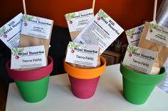 souvenir kit mini huerta,maceta,tierra y semillas