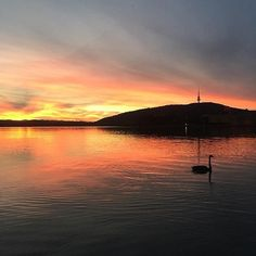 """""""Just have to love this place."""" Instagrammer @eledafine_jewellery shared this stunning sunset photo of Canberra's Lake Burley Griffin. #visitcanberra #onegoodthingafteranother"""