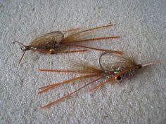 Squimp Rootbeer Fly Fishing Tips, Gone Fishing, Saltwater Flies, Salt And Water, Fly Tying, Shrimp, Ties, Patterns, Fishing
