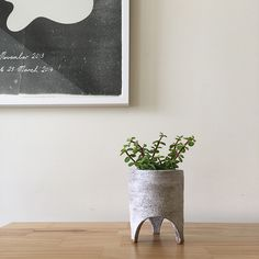 FANCY! Design Blog | NZ Design Blog | Awesome Design, from NZ + The World: Tamago Ceramics
