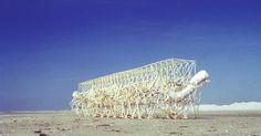 The large Geneticus Ondula beach animal, a mutatnt version of the Geneticus (Photo: Theo J...