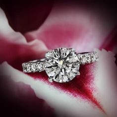 Real Love is Rare, Like a Rare Red Diamond. Aren't they one in the same? We have your one-of-a-kind diamond for your one of a kind love.