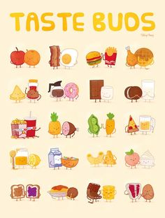 Taste Buds Poster by Philip Tseng 18 x 24 inches Do you love food? Do you love a foodie? Cute Food Drawings, Kawaii Drawings, Cartoon Drawings, Cute Food Art, Love Food, Planner Stickers, Cute Food Wallpaper, Chibi Kawaii, Food Doodles