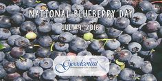 It's National Blueberry Day! But don't be blue. cheer up with a personalized crystal keepsake from Goodcount! Unusual Holidays, Wacky Holidays, Blue Cheer, Cheer Up, 3d Crystal, Crystal Gifts, Crystal Awards, 3d Laser, Laser Engraving