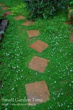 庭 芝生以外 - Google 検索
