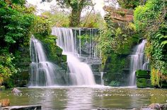 Penllergare Valley Woods, near Swansea Swansea Bay, Cymru, Wales, Waterfall, Explore, World, Holiday, Outdoor, Outdoors