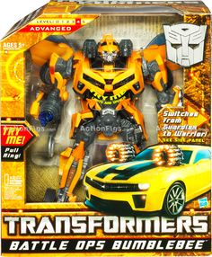 So I know what Noah's bumblebee is!