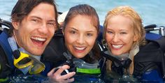 Dive site Network is the worlds largest Community discussion board dedicated to scuba diving. Learn about lessons, dive theory, gear, travel. -- http://www.divesitenet.com/home