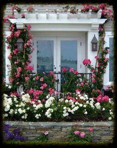 Porta envidraçada com rosas.