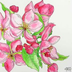 Journal, Plants, Painting, Art, Art Background, Painting Art, Kunst, Journal Entries, Paintings