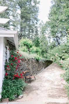 Wedding Photographer in California, Europe and Worldwide Wedding Decorations, Sidewalk, Plants, Photography, Photograph, Side Walkway, Fotografie, Wedding Decor, Walkway