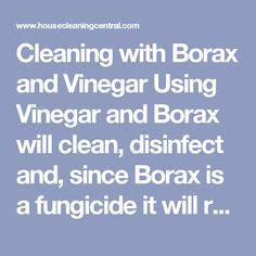 Cleaning with Borax and Vinegar Using Vinegar and Borax will clean, disinfect and, since Borax is a fungicide it will retard mold growth. This is a great solution to use on window frames and sills because the old metal windows sweat and that creates moisture and a breeding ground for mold. Since window replacement is a huge cost, I used this solution to keep the mold from returning until I could afford to have them upgraded. After application, try to keep the surface as dry as possi...