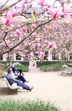 Ah spring! :D