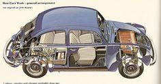 Volkswagen Beetle - My First Car - 1974  Orange VW Superbeetle