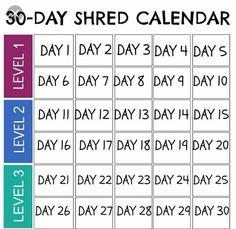 6 weeks to shred pdf