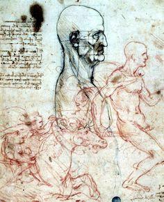 Los dibujos silenciados de Leonardo da Vinci ven de nuevo la luz en Venecia