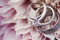 an incredible ring shot at an incredible wedding