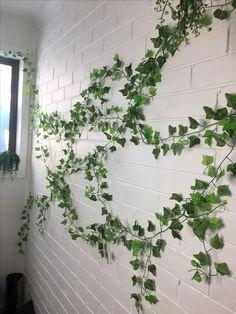Ivy wall on bricks. Indoor ivy wall. Greenwall.