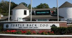 If you can't get to Cape May or are looking for other outdoor adventures in New Jersey, Turtle Back Zoo offers a similar experience in the treetops.
