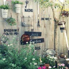 nachuさんの、バス/トイレ,JUNK,ガーデンピック,さびさび,庭,植物,セリア,多肉植物,フェンス,ガーデン,雑貨,f.45,オリーブ,Junk Arrow,のお部屋写真