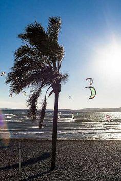 Wind & Kite